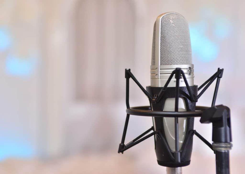 Großmembran-Mikrofon in Spinne